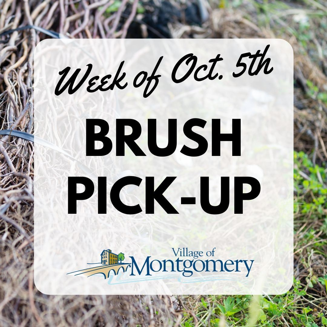 Brush Pickup Fall 2020